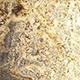 Gold and Creame Countertops in Alpharetta