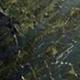 Green Countertops in Berkeley Lake