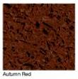 Autumn-Red in Atlanta Georgia