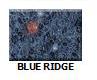 Blue-Ridge in Atlanta Georgia