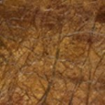 Care Forest Marble Countertops