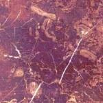 Chios Brown Granite Countertops Atlanta