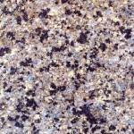 Crema Bahia Granite Countertops Atlanta