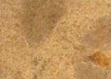 Golden Caramel Granite Countertop Limestone