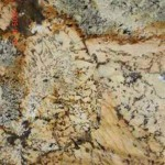Desert Gold Granite Countertops Atlanta