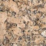Giallo Florence Granite Countertops Atlanta