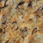 Giallo Napoleone Granite Countertops Atlanta