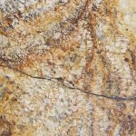 Gold Silver Granite Countertops Atlanta