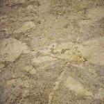 Golden Beach Leather Granite Countertops Atlanta