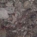 Gris Terrazo Granite Countertop Atlanta