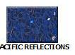 Pacific-Reflections in Atlanta Georgia