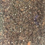 Porfido Trentino Granite Countertops Atlanta