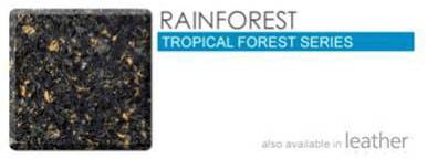 Rainforest in Atlanta Georgia