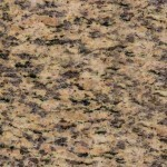 Tiger Flower Granite Countertops Atlanta