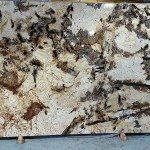 Splendor Gold Granite Countertop