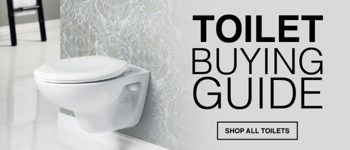 Simple Tips to Selecting the Perfect Toilet